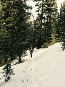 Coming down from 11,400 feet on the soft snow